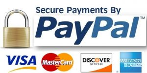 secure_payment-300x150